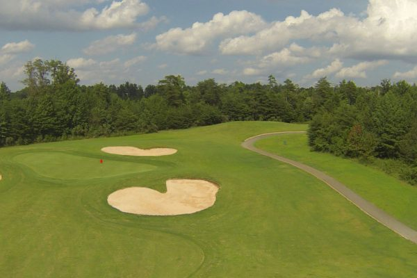CT Myers 17 Green Aerial